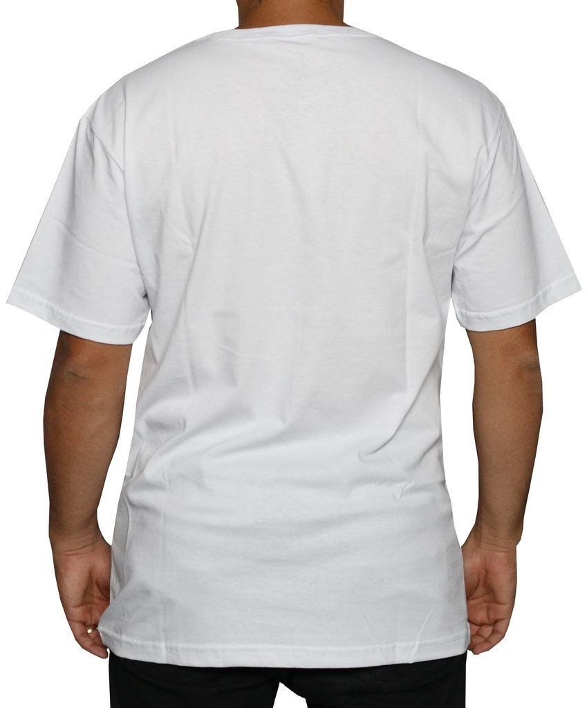 CAMISETA GRIZZLY WASHED UP STAMP WHITE - Street 14