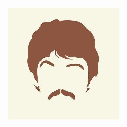 Cuadro Focu Deco Lienzo Canvas 20x20 Beatles Stencil - Paul