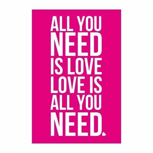 Cuadro Focu Deco Lienzo Canvas 20x30frases-all You Need Rosa