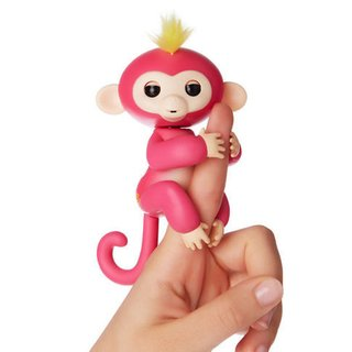 MONKEY FRIENDSHIP & YOUR FINGERTIPS