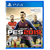Pro Evolution Soccer 2019 USADO PS4