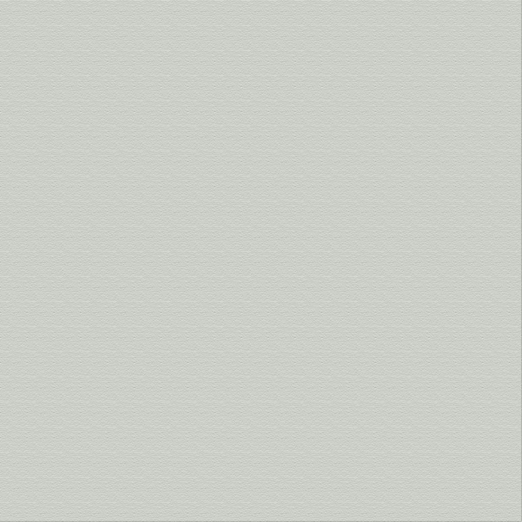 Wallpaper Liso Gris Claro 2333-5