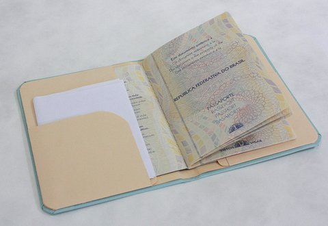 Capa para Passaporte All You need is Travel na internet