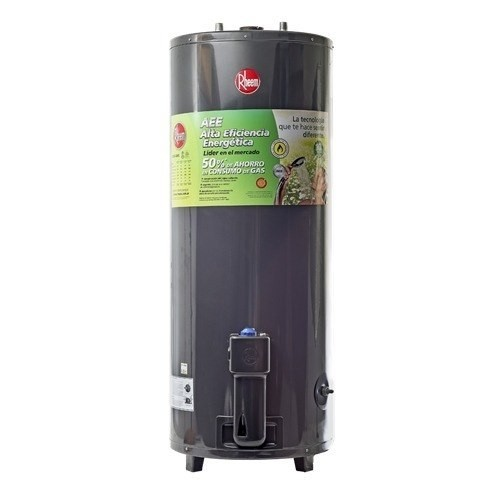 Termotannque Rheem 80 Litros A Gas Natural De Pie