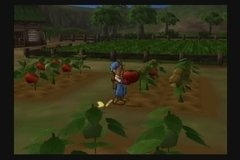 Imagem do Ps3 Harvest Moon Save The Homeland Ps2 Classic
