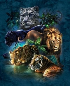(1316) Pintura com Diamante - Big Cat Prowess - 30x40 cm - Parcial