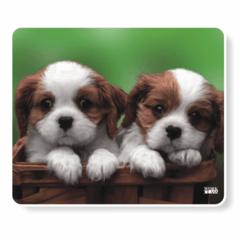 1090-Mouse Pad 2 Cachorrinhos