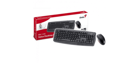 KIT TECLADO Y MOUSE USB GENIUS KM-110X