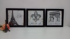 Conjunto Trio Quadros Decorativos Paris Flor de Lis
