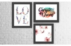 Conjunto Kit 3 Quadros Decorativos Love Carpe Diem Floral
