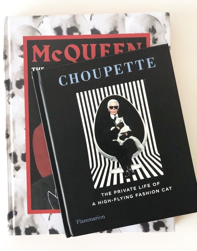 Choupette: The Private Life of a High-Flying Fashion Cat - Rizzoli - Le Book Marque