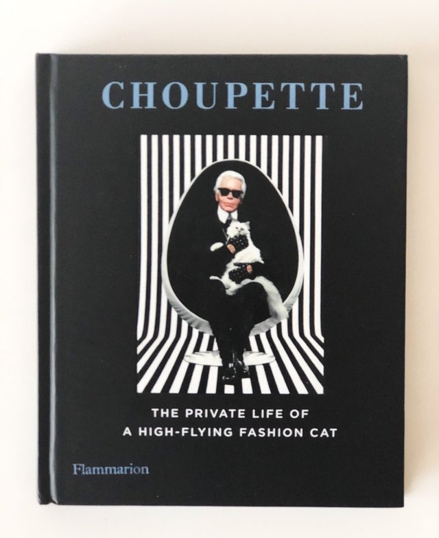 Choupette: The Private Life of a High-Flying Fashion Cat - Rizzoli - comprar online