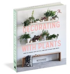 Decorating with Plants: What to Choose, Ways to Style, and How to Make Them Thrive  - Artisan