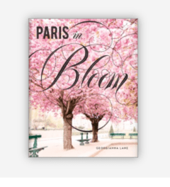 PARIS IN BLOOM - Abrams