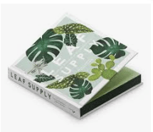 LEAF SUPPLY: A Guide to Keeping Happy House Plants - Rizzoli