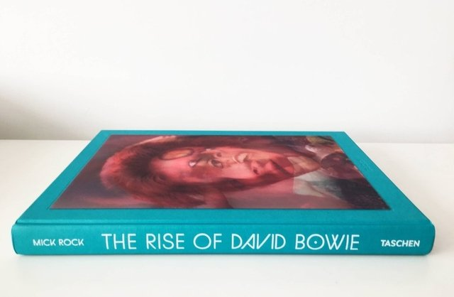 THE RISE OF DAVID BOWIE - Taschen en internet