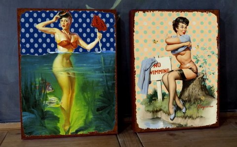 Kit 2 Telas 30x40 Pin Ups Swimming