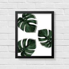 Quadro Poster Monstera na internet