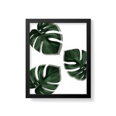 Quadro Poster Monstera - Creative Home