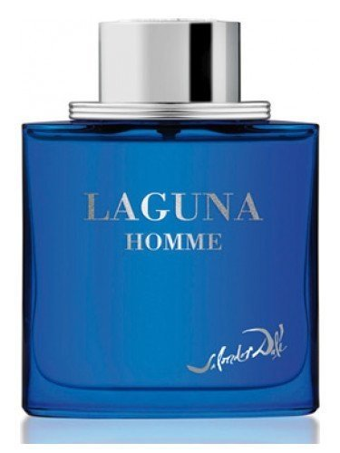 Laguna Homme by Salvador Dali is a fragrance olfactory family Oriental Woody for Hombres.Las Top notes are lime green lemon mandarin bergamot lemon lime cide and cedrn verbena verbena scent notes Corazn are I sandalwood jasmine cedar and violet cyclamen Persian the base notes are tonka bean vanilla sage ldano coumarin and musk.