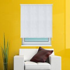 Cortina Roller Screen