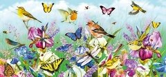 Greg Giordano: Butterflies and Blooms, 636p