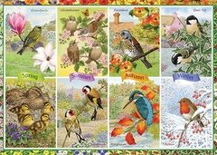Sarah Adams: Seasonal Garden Birds, 1000p