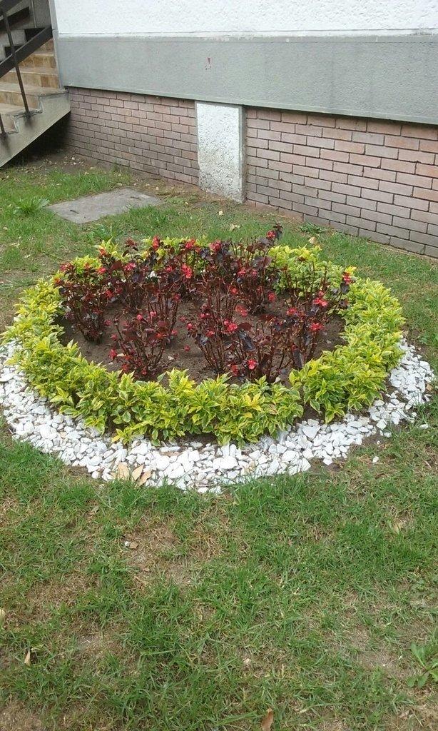 Piedras decorativas para jardines chimeneas for Piedras decorativas jardin
