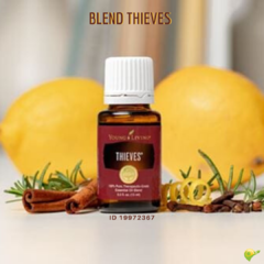 Thieves Óleo Essencial Young Living - Blend