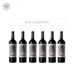 BOX SOMBRERO BLACK & REGALO (7 BOTELLAS).