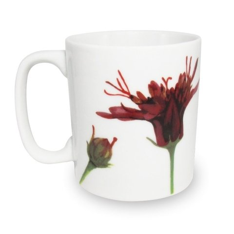 CANECA CRAVO DO CAMPO FLORES