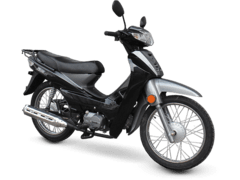 Moto Zanella DUE 110 en internet