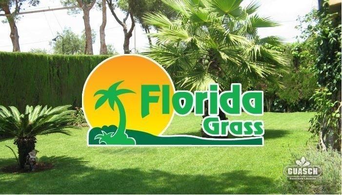 Florida Grass Mix Mezcla