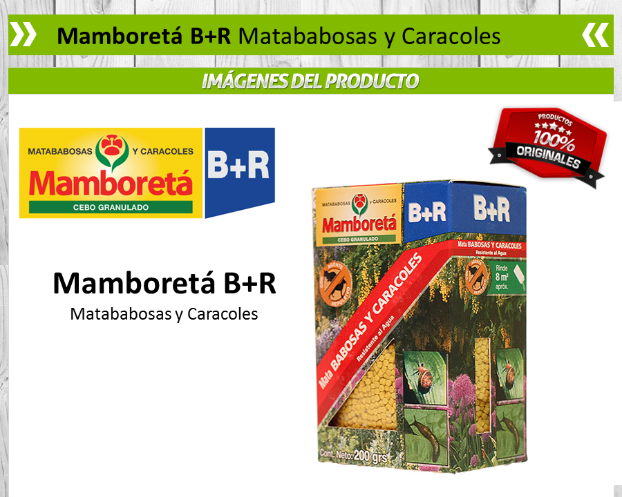Mamboretá B+r - Matababosas Y Caracoles