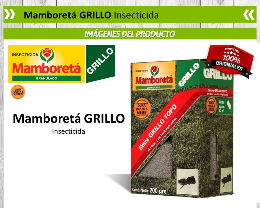 Mamboreta Grillo (grillo topo)