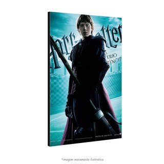 Poster Harry Potter e o Enigma do Príncipe na internet