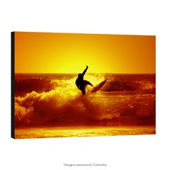 Poster Surfer na internet