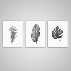 Conjunto 3 Quadros Decorativos Folha Tropical - Escandinavo na internet