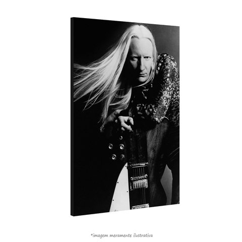 Poster Johnny Winter na internet