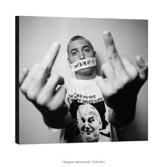 Poster Eminem - Double Middle Finger na internet