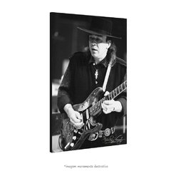 Poster Stevie Ray Vaughan na internet