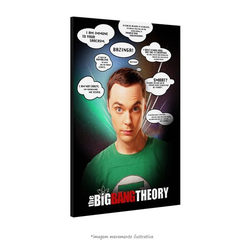 Poster The Big Bang Theory - Frases Memoráveis na internet