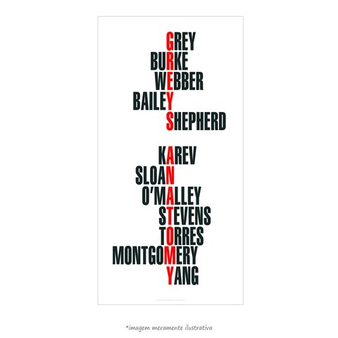 Poster Grey's Anatomy - Nomes - QueroPosters.com