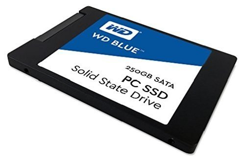 DISCO RIGIDO SSD 250GB WD BLUE SATA III INTERNAL - Exxa Store