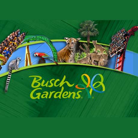 BUSCH GARDENS 1 DAY