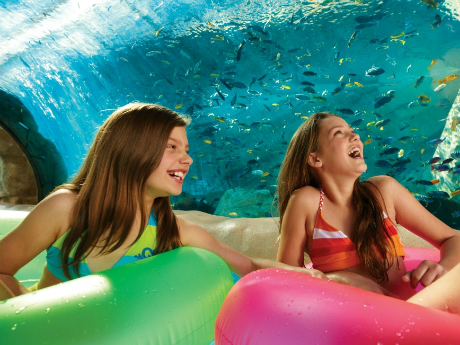 SEA WORLD - 3 DIAS - VISITE 3 PARQUES: SEA WORLD, BUSCH GARDENS TAMPA, AQUATICA ORLANDO OU ADVENTURE ISLAND TAMPA