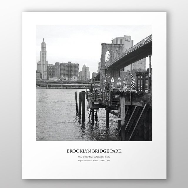 Brooklyn Bridge Park (Portfolio