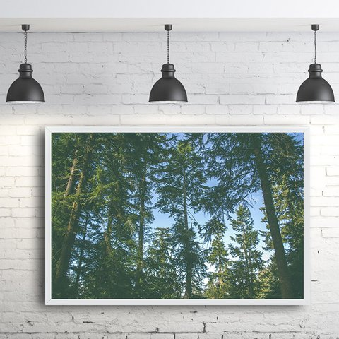 Quadro Decorativo floresta