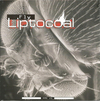 LIPTOCOAL - Fly