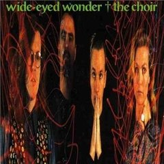 The Choir - Wide Eyed Wonder (cd 1989) Cd Raro